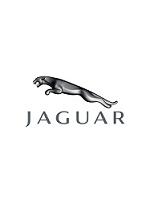 Pédalier alu Jaguar